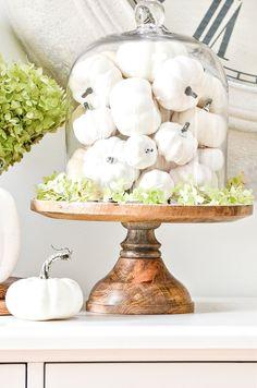 Faux Pumpkins, White Pumpkins, Fall Home Decor, Autumn Home, Thanksgiving Decorations, Seasonal Decor, Fall Vignettes, Fall Crafts, Fall Pumpkin Crafts