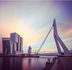 Erasmusbrug en de Rotterdam #pic only