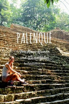 Palenque ist eine archäologische Ausgrabungsstätte mit Maya-Ruinen, die mitten…