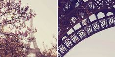 Paris-beauty. I can't wait to visit.