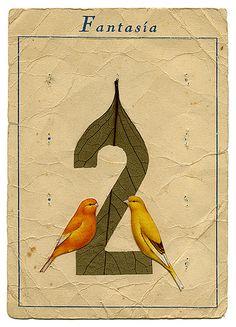 2 #alphabet #type