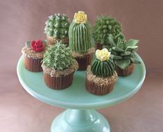 Meet The Blogger Behind These Succulent Cupcakes - The Chalkboard
