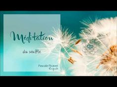 Méditation du Souffle - YouTube