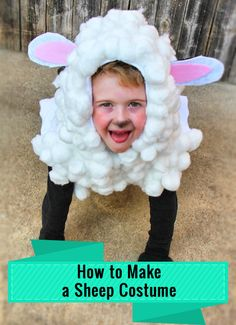 The Kid Who Needed a Sheep Costume