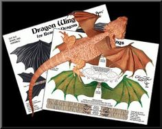 Dragon Wings for Bearded Dragons