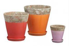 Eye candy! Amazing pots to brighten up any backyard