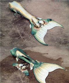 Gold – Page 3 – Mermaid Tail Collection Mermaid Fin, Mermaid Tale, Mermaid Swimsuit, Tattoo Mermaid, Real Life Mermaids, Mermaids And Mermen, Fantasy Mermaids, Little Mermaid Costumes, The Little Mermaid
