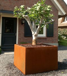 Adezz 'Andes' Corten Steel Garden Planter by Riverhill Garden Supplies Metal Planter Boxes, Corten Steel Planters, Trough Planters, Wooden Planters, Outdoor Planters, Planter Pots, Planter Ideas, Large Square Planters, Commercial Landscaping