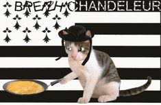 chat-chandeleur-2.gif
