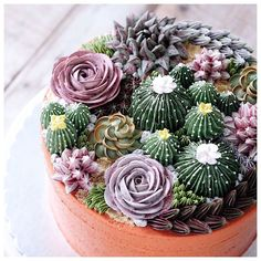 Repost ivenoven Terrarium in the clay pot. It's buttercream cake anyway ? Repost ivenoven Terrarium in the clay pot. It's buttercream cake anyway ? Pretty Cakes, Cute Cakes, Beautiful Cakes, Amazing Cakes, Bolo Floral, Floral Cake, Succulent Cupcakes, Cactus Cake, Cactus Cupcakes