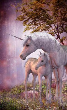 Jument licorne et son bebe