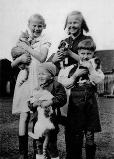 Pet collection – Lemmikkikokoelma - Finland, cats, dogs