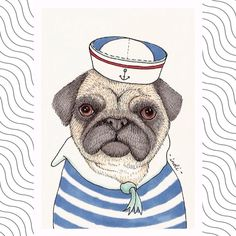 Illustrations of lovely pugs Sailor Illustration, Cute Animal Illustration, Illustration Sketches, Illustrations And Posters, Primary School Art, Pug Art, Tinta China, Boy Dog, Pug Puppies