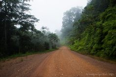 The road to Lope in Gabon