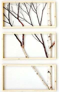 Framed birch art- totally going to do this with my old vintage window or this way!!!