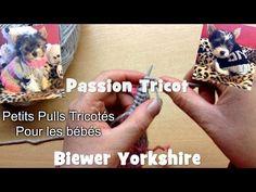Passion Tricot: Petits pulls pour chiens de petites tailles - YouTube Biewer Yorkshire, Passion, Pulls, Floral, Couture, Animals, Outfits, Pet Clothes, Gatos