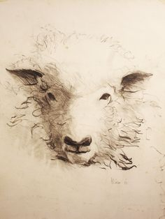 """""""Old Goat"""" (18""""x14"""", pencil)"""