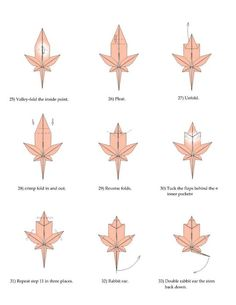 Maple Leaf origami tutorial | Xinblog
