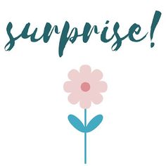 handmadebynanda: Surprise!