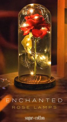 Enchanted Rose Flower Lamp The flower and petals look SO realistic! This captivating Enchanted Rose Flower Lamp is incredibly beautiful! What a lov. Enchanted Rose, Valentine History, Single Red Rose, Flower Lamp, Unique Lamps, Glass Domes, Red Roses, Glass Art, Diy And Crafts