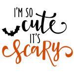 i'm so cute it's scary phrase