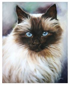 Custom Pet Portrait Custom Cat Painting Oil Painting by cmqstudio, $90.00