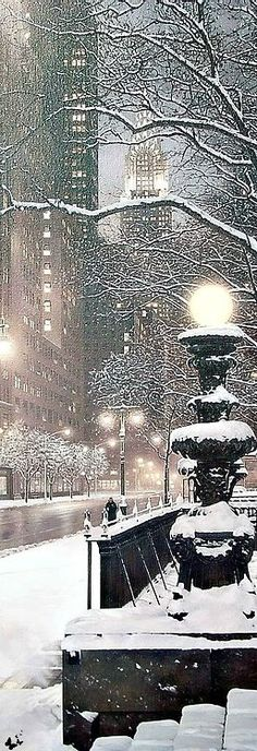 NYC Through Elia's Eyes. A snowy scene. TG