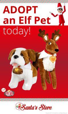 Elf Pets Reindeer | Elf Pets Saint Bernard |  Family Activity | Activities for Kids | Good Deeds | Elf on the Shelf Ideas