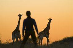 Kubu Safari Lodge is a romantic weekend getaway in Kruger National Park.