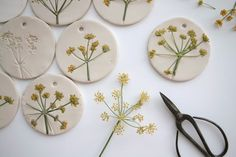 Pressed flowers in clay.