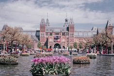 amsterdam_tipps_rijksmuseum_tulpen Travel List, Travel Europe, Holland, Amsterdam Travel, Wonders Of The World, Iphone, Tips, Europe, Pictures