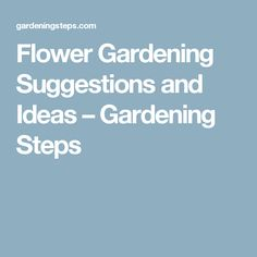 Flower Gardening Suggestions and Ideas – Gardening Steps