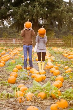 Pumpkin picking = one of the best fall activities :) Brought to you by Shoplet.com-everything for your business.