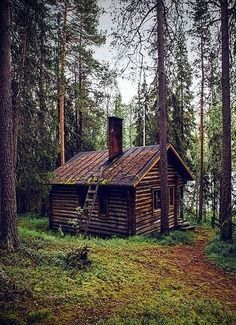 Browse through our collection of forest images and forest pictures. High quality pictures of forest and images of forest. All forest photos are royalty free. Small Log Cabin, Little Cabin, Log Cabin Homes, Cozy Cabin, Cottage Homes, Lost In The Woods, Cabin In The Woods, Old Cabins, Cabins And Cottages