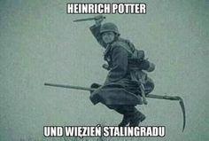 Best Memes, Dankest Memes, Jokes, Stupid Funny Pictures, Haha Funny, Hilarious, Polish Memes, Russian Memes, Funny Mems