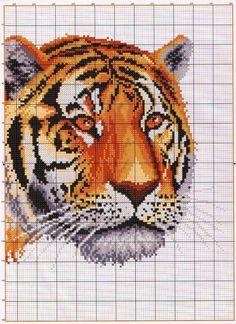 TIGRE-LEON-4.jpg (744×1024)