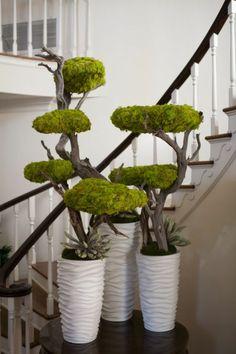 Deko mit moos bonsei bäume mit moos decke