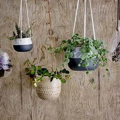 Hang this Bloomingville flower pot from walls or ceilings to bring a touch of nature into your home, Scandi-style. With three hanging rope ties, this pot is best suited to trailing or low-lying plants. Calathea, Potted Plants, Indoor Plants, Hanging Planters, Planter Pots, Hanging Rope, Yucca, Chlorophytum, Green Bar