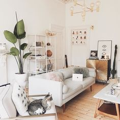 The perfect Saturday involves candles & cats #KLVhome