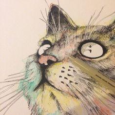 Colour Cat illustration ink  ©Alfred Basha