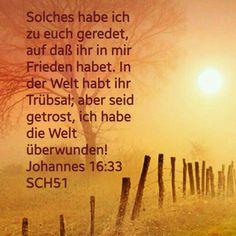 #BibleCelebration