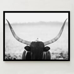 Minted for west elm - Staredown
