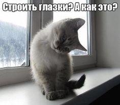 Наталья Падалко – Google+