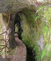 Madeira Levadas  http://www.travelandtransitions.com/destinations/destination-advice/europe/madeira-portugal/