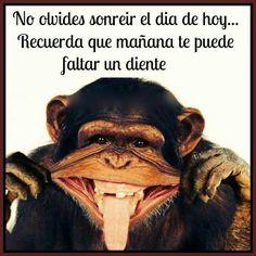 #frases, dia, palabras, sonrisa, rie, amor vida