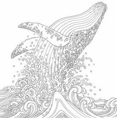 Animal Odyssey Chris Garver's newest offering for adult coloring fans is a beautiful continuation of his detailed illustrations for the bestselling book Color Odyssey. Featuring a wide array of animal Animal Coloring Pages, Coloring Book Pages, Coloring Pages For Kids, Coloring Sheets, Coloring For Adults, Chris Garver, Ecole Art, Mandala Coloring, Art Plastique