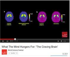 Il sistema della ricompensa e la dipendenza dalle droghe / Reward pathway in the brain , Tolerance and withdrawal e What the mind hungers for : The craving brain