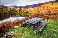 Picnic bench, Elan Valley, Rhayader Dams, Wales