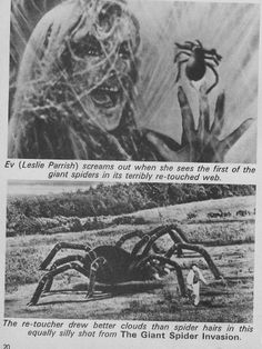 The Giant Spider Invasion 1977