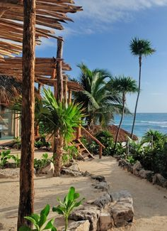 Breezy collection of beachside thatch-roofed cabanas in the heart of rustic-chic Tulum